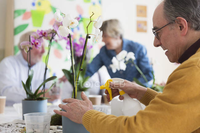 Active senior man with spray bottle watering orchid in flower arranging class — Stock Photo