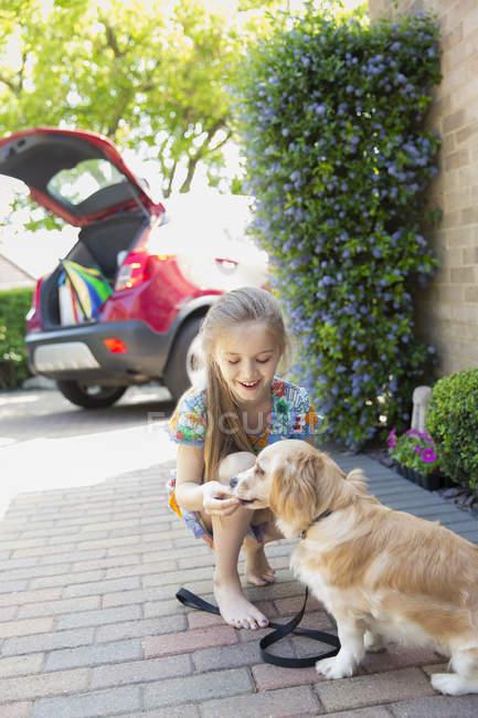 Девушка угощает собаку на подъездной дорожке — стоковое фото
