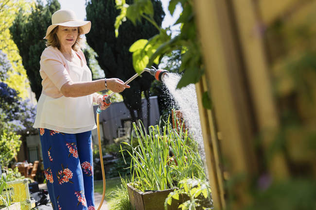 Active senior woman gardening, watering plants — Stock Photo