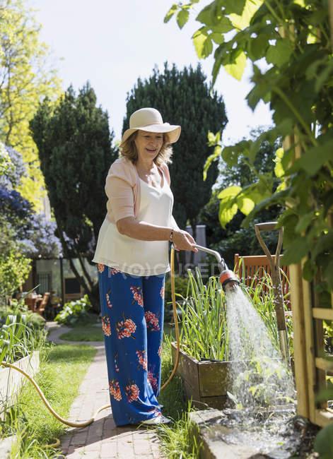 Jardinería activa de mujeres mayores, plantas de riego - foto de stock