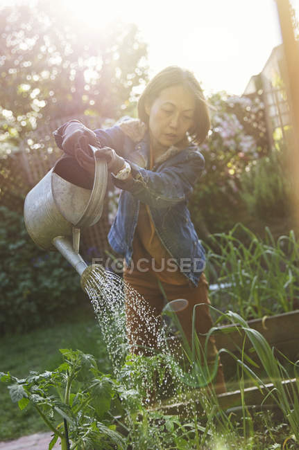 Femme âgée active jardinage, arrosage des plantes — Photo de stock