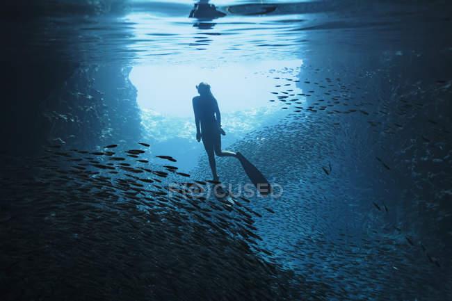 Жінка підводним плаванням під водою серед школи риби, Vava'u, Тонга, Тихий океан — стокове фото