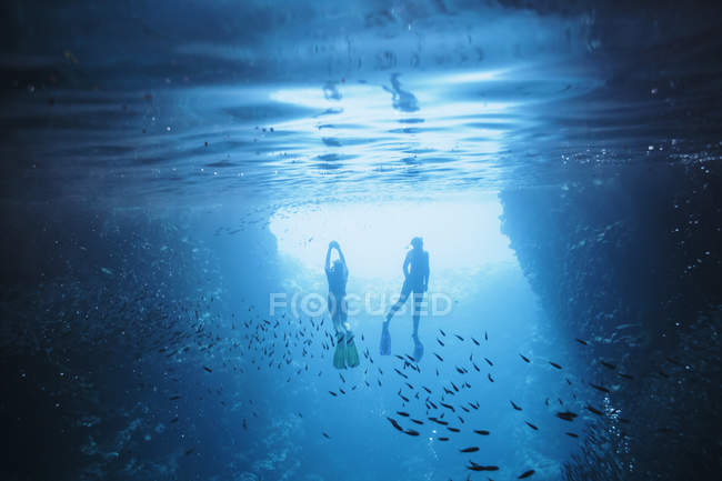 Couple snorkeling underwater among fish, Vava'u, Tonga, Pacific Ocean — Stock Photo