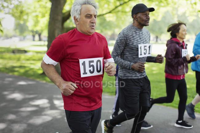 Активный старший бегун в парке — стоковое фото