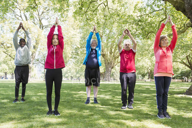 Active seniors exercising, practicing yoga in park — Stock Photo