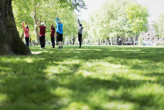 Aînés actifs exerce, la pratique du yoga dans le parc — Photo de stock