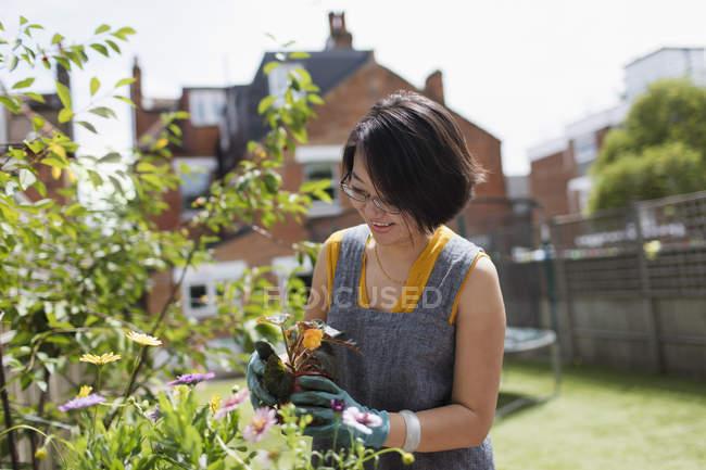 Woman gardening in sunny yard — Stock Photo