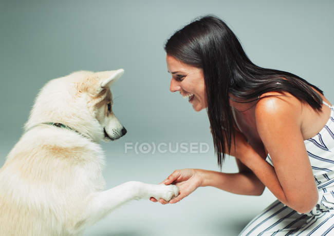 Smiling woman shaking dogs paw — Stock Photo