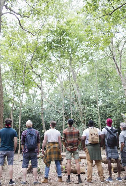 Чоловіча Група походи, стоячи в ряд і птах дивиться в лісі — стокове фото