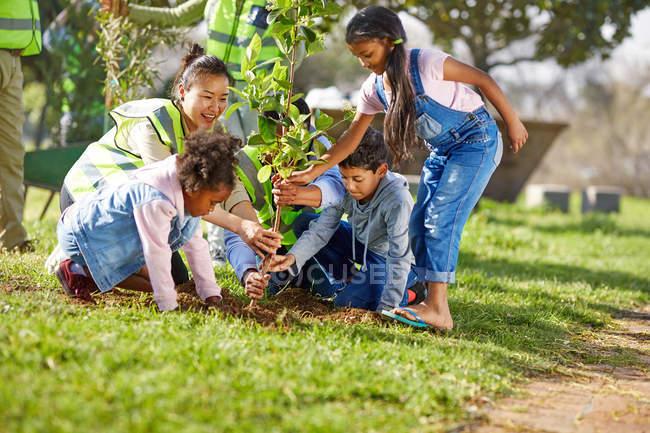 Miúdo voluntários ajudando a plantar árvore ins ensolarado parque — Fotografia de Stock