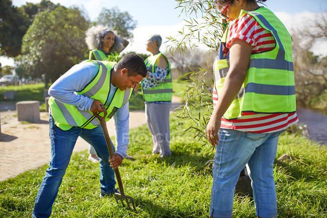 Des bénévoles plantent des arbres dans un parc ensoleillé — Photo de stock