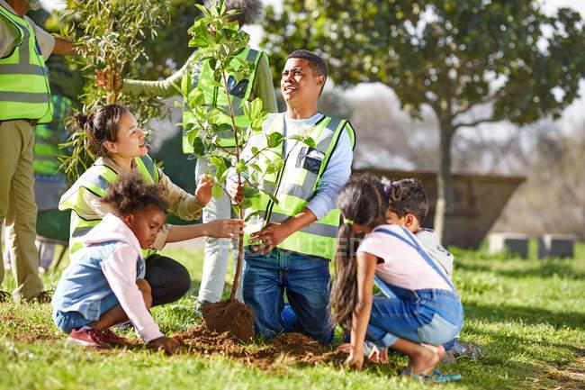 Des bénévoles plantent des arbres dans le parc — Photo de stock