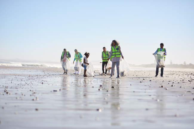 Волонтери прибирає послід на сонячному піщаному пляжі — стокове фото