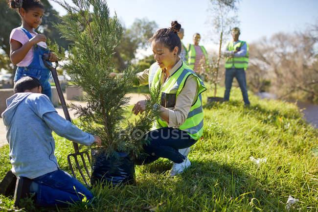 Volontaires femmes et enfants plantant des arbres au camping ensoleillé — Photo de stock