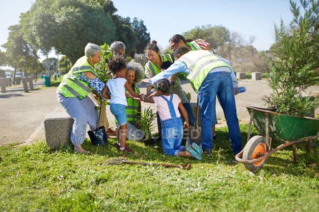 Des bénévoles communautaires plantent des arbres dans un parc ensoleillé — Photo de stock