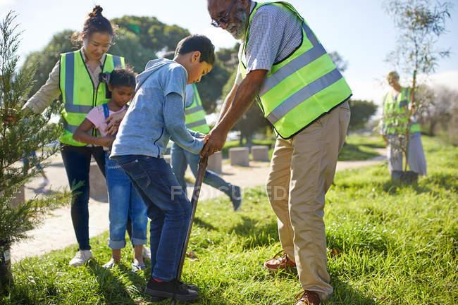Des bénévoles de plusieurs générations plantent des arbres dans un parc ensoleillé — Photo de stock