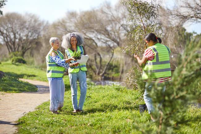 Volontaires femelles plantant des arbres et des plantes dans un parc ensoleillé — Photo de stock