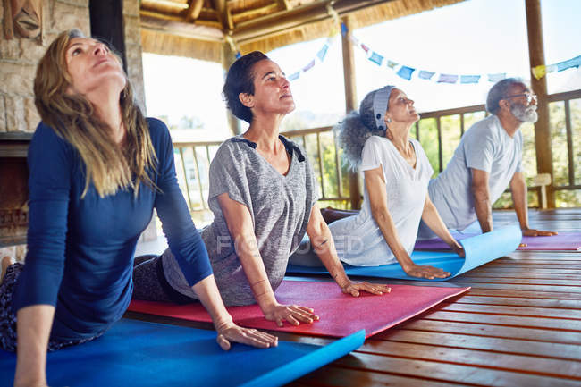 Serene group practicing upward facing dog pose in hut during yoga retreat — Stock Photo