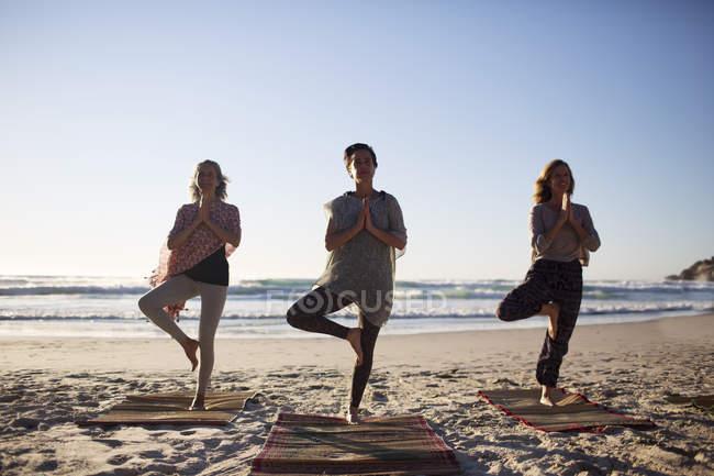 Gelassene Frauen beim Yoga-Baumposieren am sonnigen Strand während des Yoga-Retreats — Stockfoto