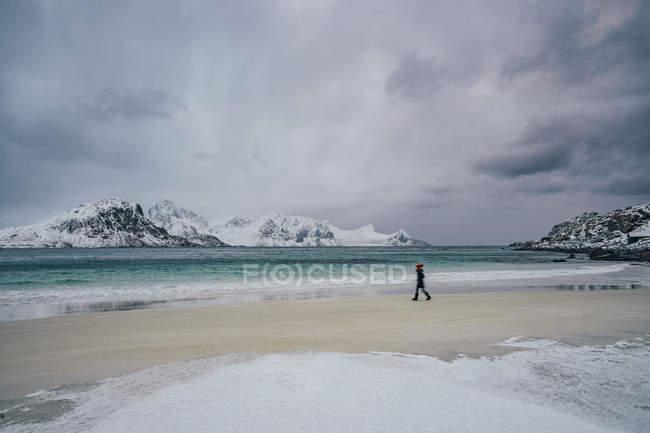 Woman walking on cold, snowy beach, Lofoten Islands, Norway — Fotografia de Stock