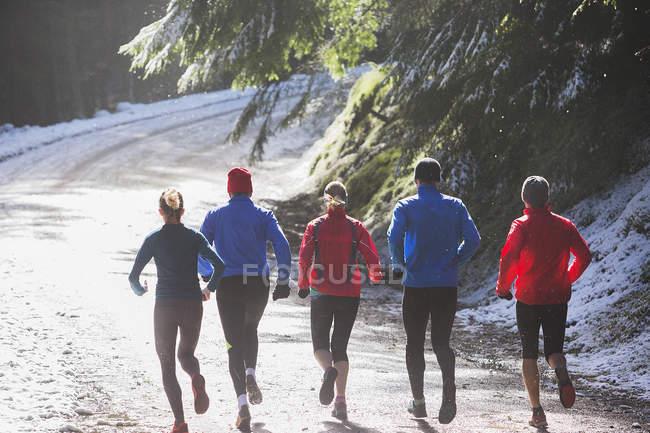 Corrida familiar em bosques de inverno — Fotografia de Stock