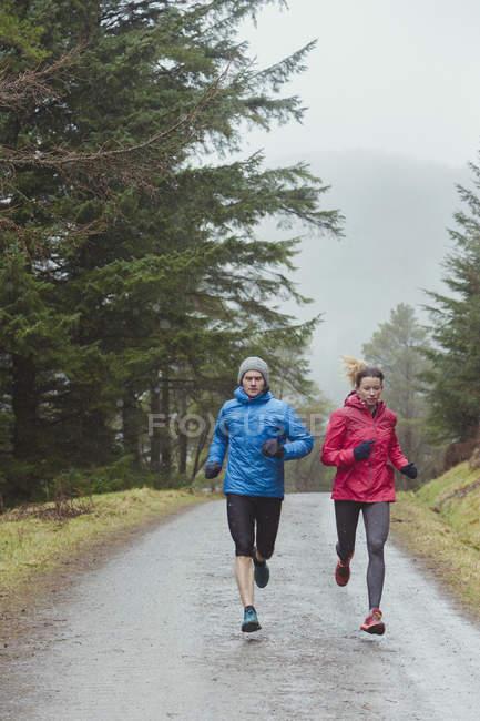 Пара пробежек в лесу — стоковое фото
