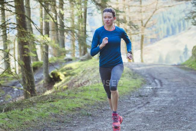 Женщина бегает в лесу — стоковое фото