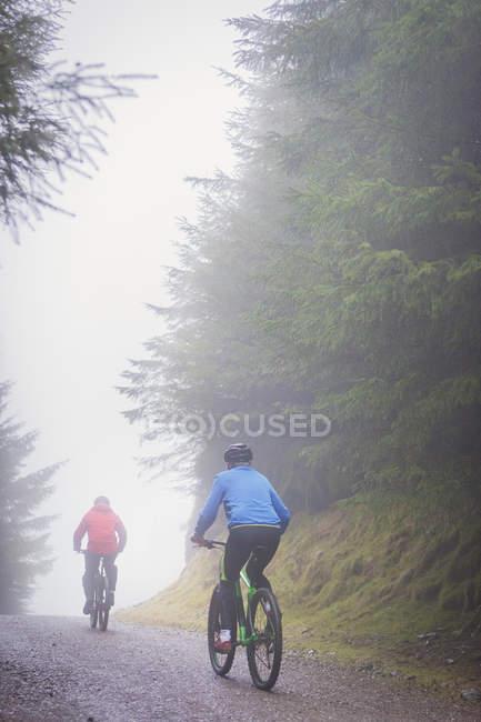 Retour vue des femmes en vélo de montagne sous la pluie — Photo de stock
