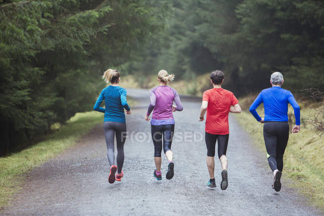 Visão traseira da família correndo em bosques — Fotografia de Stock
