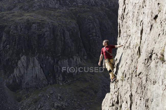 Escalador de roca macho escalando la cara de roca alta, mirando a la vista sobre el hombro - foto de stock