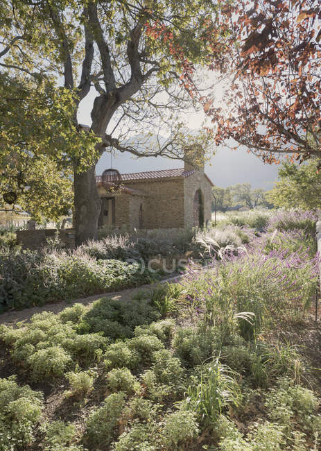 Idyllic church and sunny, tranquil summer garden — Stock Photo