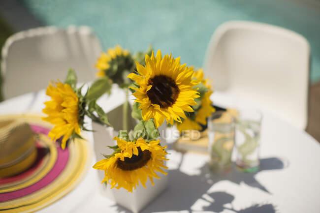 Girasoli sul soleggiato tavolo patio a bordo piscina — Foto stock
