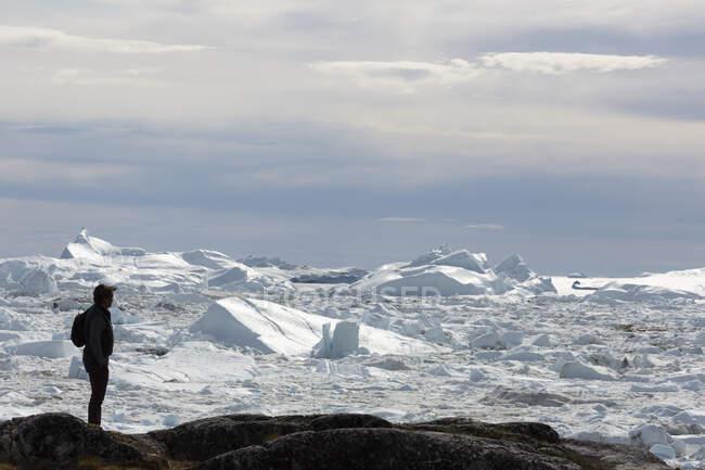Silhouette homme regardant la fonte des glaces polaires Groenland — Photo de stock