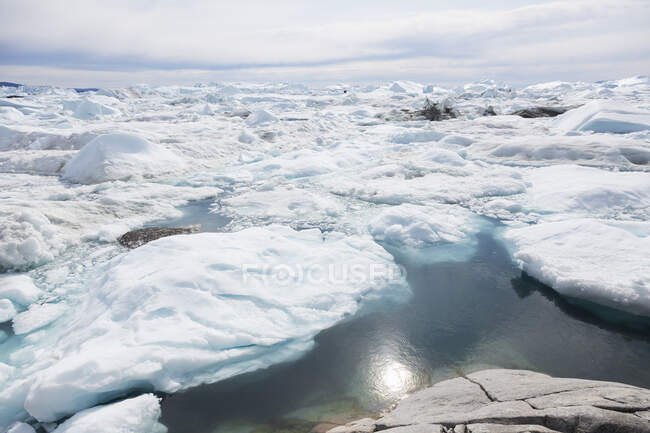 Polar ice melt Greenland — Stock Photo