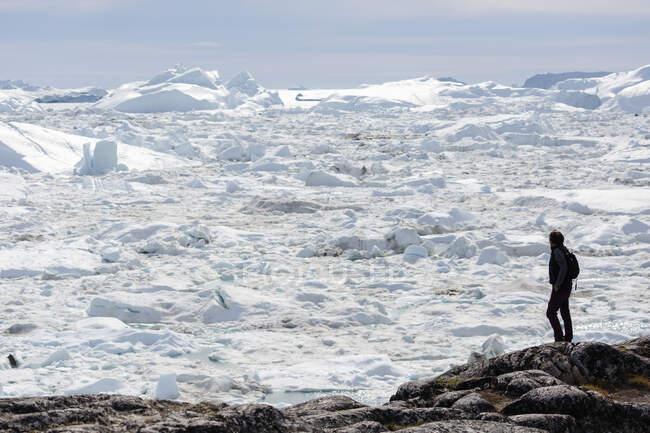 Homme sur des rochers regardant le glacier ensoleillé vue sur la fonte des glaces Groenland — Photo de stock
