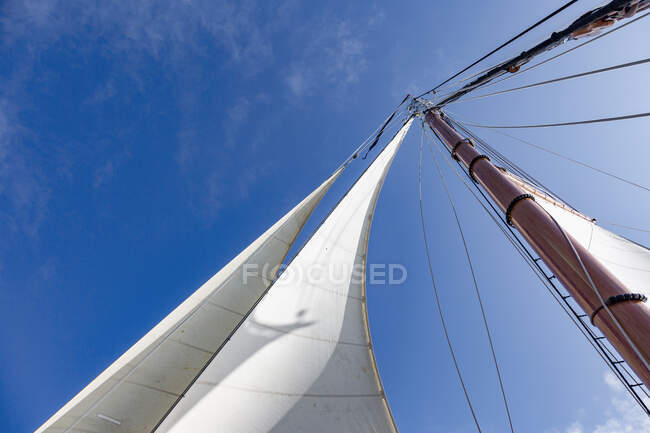 Sailboat sail and mast under sunny blue sky — Stock Photo