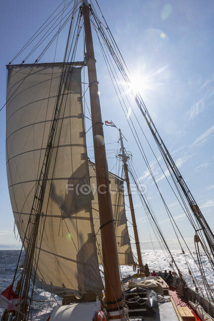 Sailboat on ocean under sunny blue sky — Stock Photo