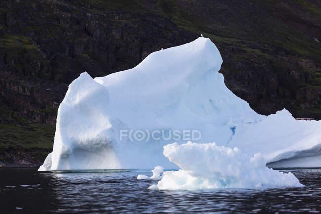 Derretendo icebergs na Groenlândia — Fotografia de Stock