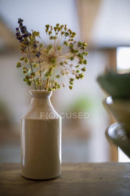 Rustic flower stems in ceramic vase — Stock Photo