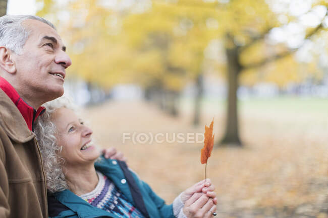 Affectionate, curious senior couple holding leaf in autumn park — Stock Photo
