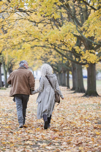 Affectionate senior couple holding hands, walking among trees and leaves in autumn park — Stock Photo