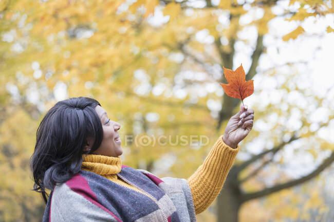 Donna curiosa che tiene arancione foglia autunnale sotto l'albero nel parco — Foto stock