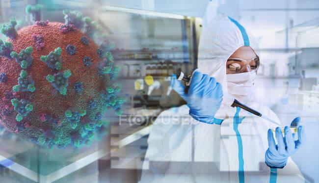 Cientista pesquisando coronavírus em laboratório — Fotografia de Stock