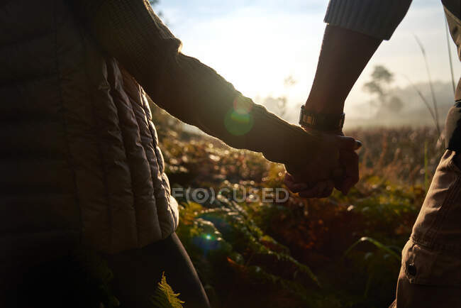 Close up silhouette young couple holding hands on sunny hike in nature — Stock Photo