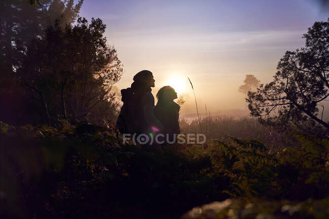 Silhouette serene young couple enjoying hike in nature at sunset — Stock Photo