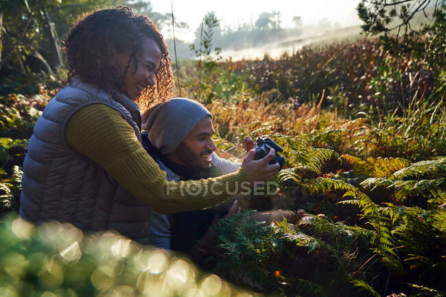 Happy hiking couple using camera among sunny ferns and undergrowth — Stock Photo