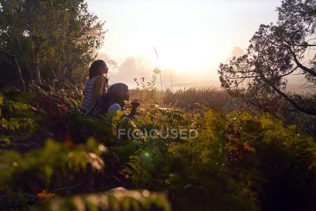 Serena giovane coppia con binocolo in natura al tramonto — Foto stock