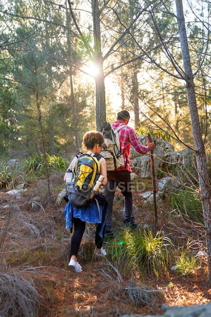 Молодая пара с рюкзаками прогулки в солнечных лесах — стоковое фото