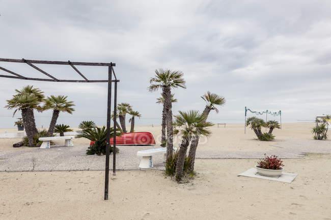 Италия, Tortoreto Лидо. Перевернутой лодки и пальмы на пляже — стоковое фото
