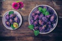 Ciruelas de cosecha fresca púrpura en placas sobre mesa de madera, flores en florero, vista superior - foto de stock